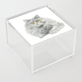 Zelda Acrylic Box