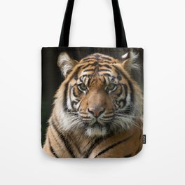 Look into my eyes by Teresa Thompson Tote Bag
