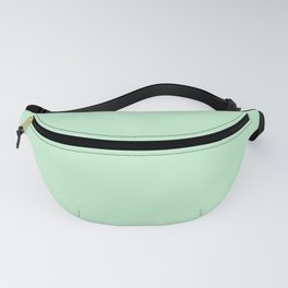 Pastel green color clear Fanny Pack