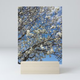 Blossom Time Mini Art Print