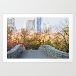 Central Park as the City Wakes Up Art Print