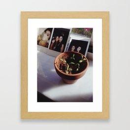 Daisy Spouts Framed Art Print