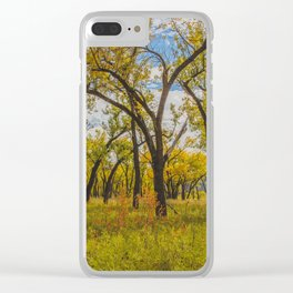 Cottonwoods, Theodore Roosevelt NP, ND 3 Clear iPhone Case