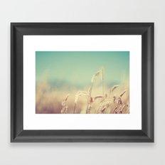 golden no. 3 Framed Art Print