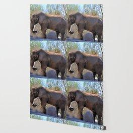 An African Elephant Dust Bath - Wildlife Art Wallpaper
