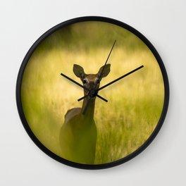 Keeping Tabs - Watchful Young Deer Through Tree Leaves in Wyoming Wall Clock