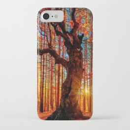 Majestic woods iPhone Case