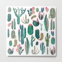 cactus, all of them by franciscomffonseca