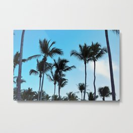 Coconut trees   Praia do Espelho   Brazil Metal Print