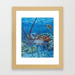 Lobster Season Framed Art Print