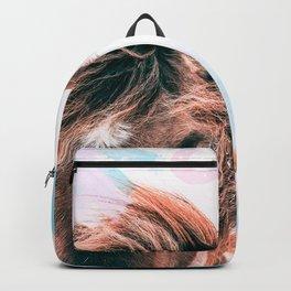 Horse horseshoes Backpack