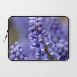 Macro Grape Hyacinth 2 Laptop Sleeve