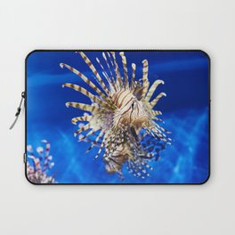 Poisonous lionfish in blue water sea Laptop Sleeve
