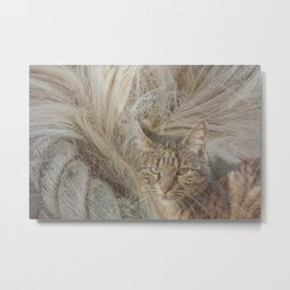 Warmth and comfort Metal Print