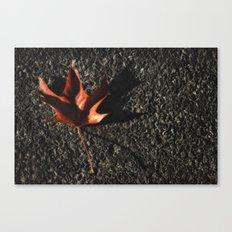 red leaf. Canvas Print