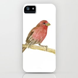 House Finch Bird Watercolor iPhone Case