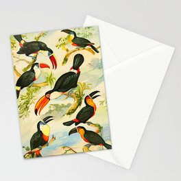 Album de aves amazonicas - Emil August Göldi - 1900 Tropical Colorful Amazon Birds Stationery Cards