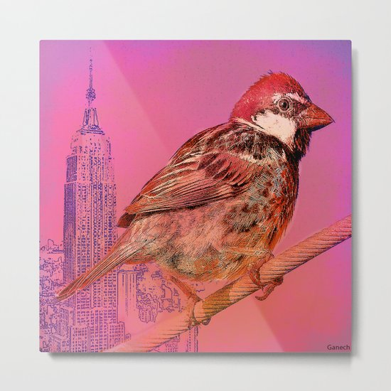 The New York sparrow Metal Print