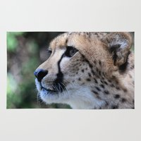 cheetah Area & Throw Rugs featuring Cheetah by Dr. Tom Osborne
