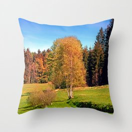 Tree in springtime scenery | landscape photography Throw Pillow