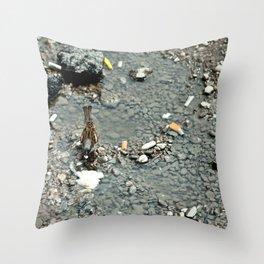 Bird in Bucharest Throw Pillow
