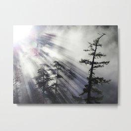 Misty Morning Sunrise Metal Print