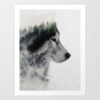 Art Prints featuring Wolf Stare by Andreas Lie