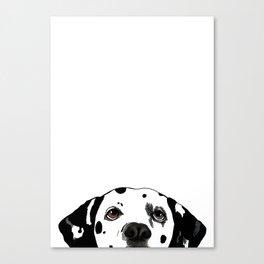 Dalmatian #1 Canvas Print