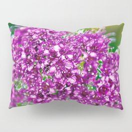 Major Key Pillow Sham