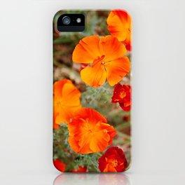 Copperpot iPhone Case