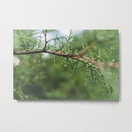Green droplets Metal Print