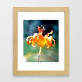 Honey Bee Framed Art Print