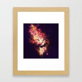 abstract young cat wsstd Framed Art Print