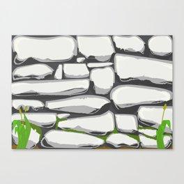 Grey Stone Wall Canvas Print