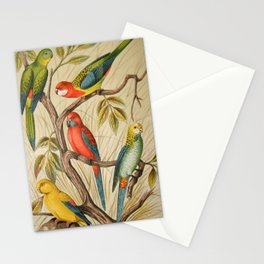 Vintage parrots Stationery Cards