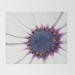 Beautiful White African Daisy Close-Up Macro  Throw Blanket