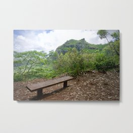 Respect Kauai Metal Print