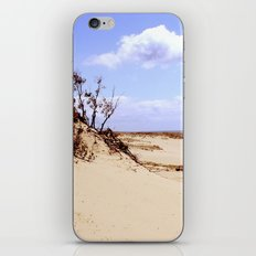 dust in the wind iPhone & iPod Skin