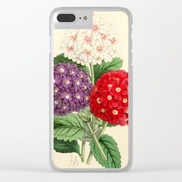 Andrews, James (1801-1876) - The Floral Magazine 1869 - Verbenas Clear iPhone Case