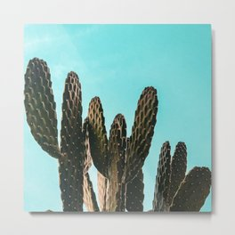 Cactus Photography Print {1 of 4} | Teal Succulent Plant Nature Western Desert Plants  Design Decor Metal Print