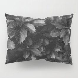 Thriving sans Saturation Pillow Sham