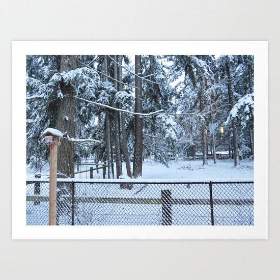 Snowy yard Art Print