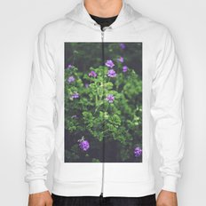 Purple Blossoms Hoody