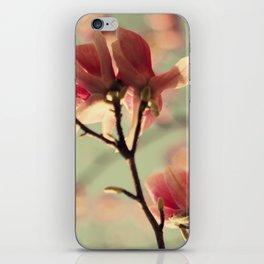Dogwood flowers iPhone Skin