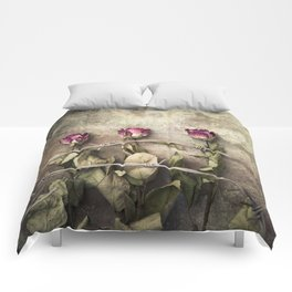 Three dried roses and barbed wire Comforters