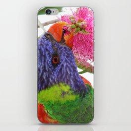 Springtime in Oz iPhone Skin