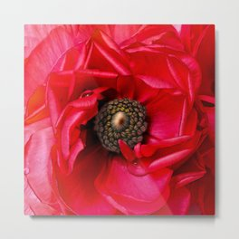 Red Passion Metal Print