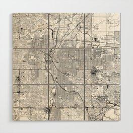 Denver White Map Wood Wall Art