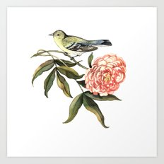 Watercolor illustration with bird and flower Art Print