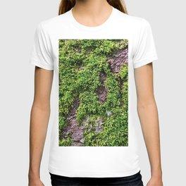 Transcend, Glacier National Park T-shirt